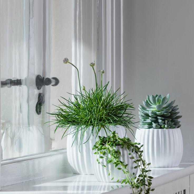 Flora urtepotte i porcelæn fra Créton Maison. Sæt en friske blomst eller plante i urtepotten og stil den i din vindueskarm eller på en hylde. Potten vil pynte i alle boligens rum.