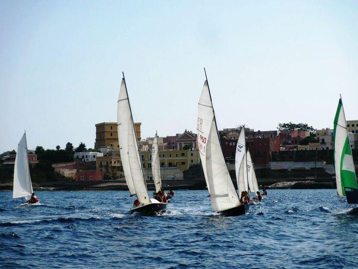 21 Luglio: tutti pronti per la prima uscita, ecco parte della flottiglia davanti a #Ventotene. #corsi #mare #vacanze #estate #ragazzi