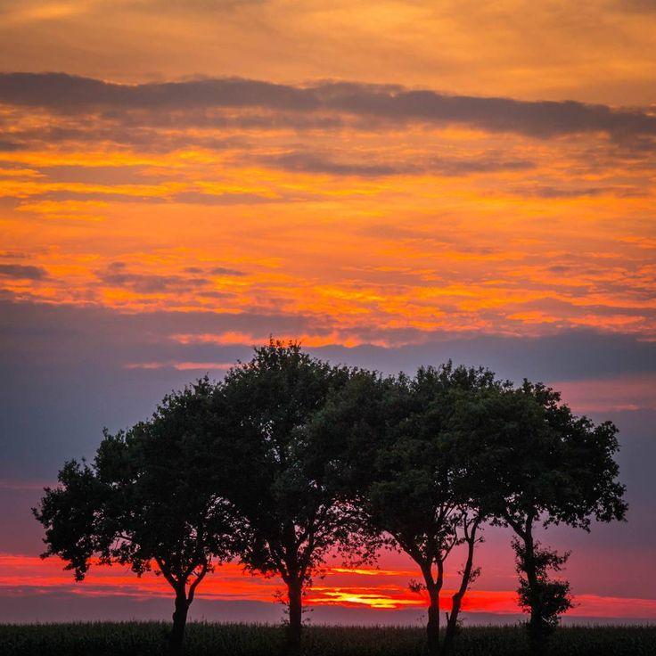 Sunset tonight in Veenhuizen.   #ig_landscapes #instanetherlands #drenthe #dasnoudrenthe #mooidrenthe #landscapes #landscapephotography #naturephotography #landscapelovers #landschapsfotografie #drentselandschap #drenthedoetwatmetje #igersdrenthe #sunset #skyporn