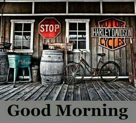 Good Morning Harley Memes Toons Amp Biker Sayings Harley