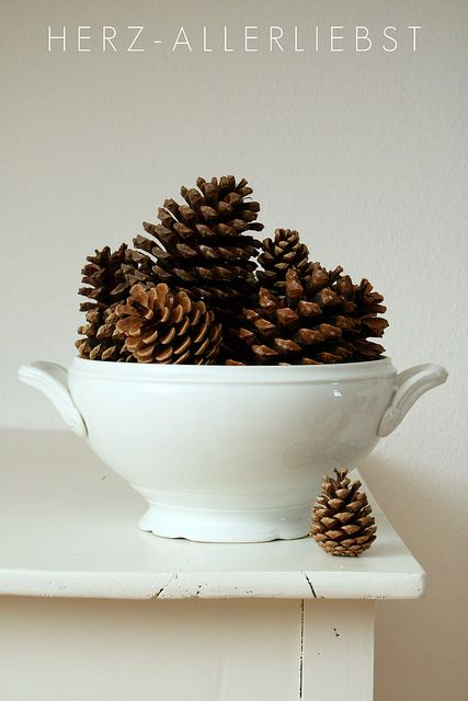 Pine cones in a tureen.