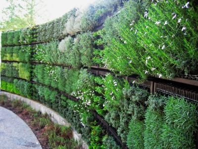 images about Vertical Gardens on Pinterest Gardens