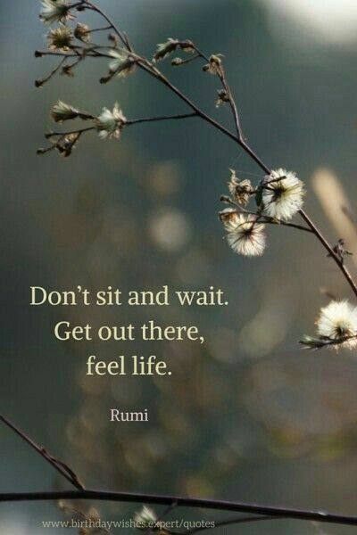 Don't sit and wait. Get out there, feel life.