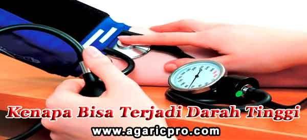 Kenapa Bisa Terjadi Darah Tinggi: http://www.agaricpro.com/kenapa-bisa-terjadi-darah-tinggi/