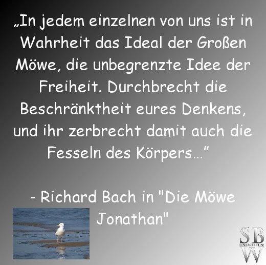 """wie wahr... Zitat aus: """"Die Möwe Jonathan"""" von Richard Bach"""