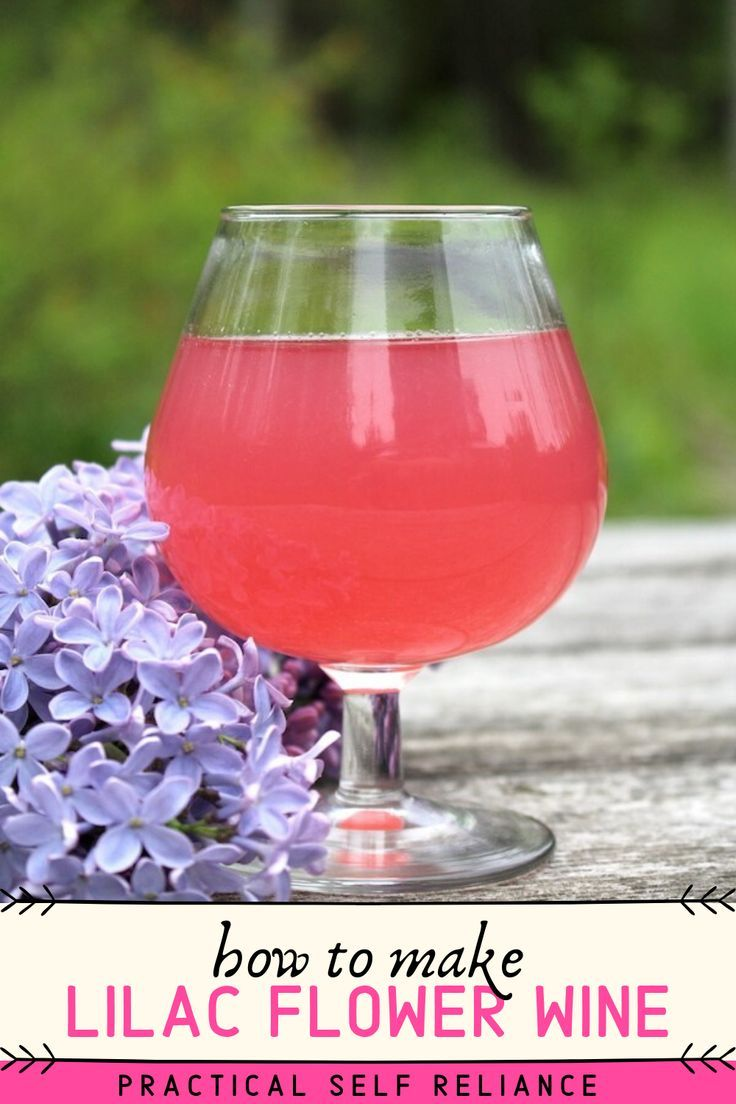 Homemade Lilac Wine Recipe In 2020 Wine Wine Recipes Lilac
