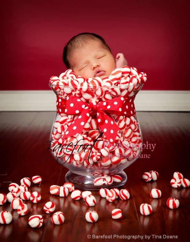 newborn photography christmas candy