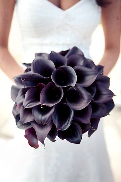 Elegant deep purple calla lily bouquet by Butterfly floral & event design. Click to view our Bridal Bouquet gallery with over 100 beautiful bouquet images.