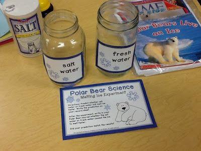 Polar Bears science experiment