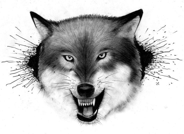 Trabajo a pedido (Lobo) | Dibujo a lápiz sobre papel