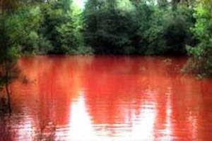 Danau Pagaralam Bengkulu, Indonesia  Danau yang satu ini lain daripada yang lain. Bila biasanya air danau berwarna jernih, hijau atau biru maka di Danau Pagaralam ini airnya berwarna merah darah. Danau Pagaralam berlokasi di perbukitan Raje Mandare, di perbatasan antara Kota Pagaralam dan Kaur, Propinsi Bengkulu. - See more at: http://tiketpesawatklaten.blogspot.com/2013/11/danau-pagaralam-bengkulu-indonesia.html#sthash.qrNxEa58.dpuf