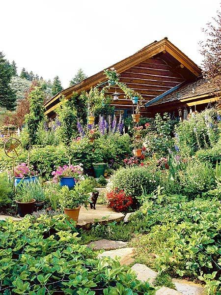 139 best Edible landscaping... images on Pinterest