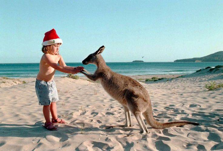 Weihnachtsbräuche in aller Welt: Oh, du komische - SPIEGEL ONLINE - Reise