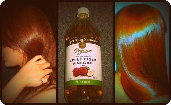 4 Ultimate Home Remedies to stop Hair fall   Tips Zone