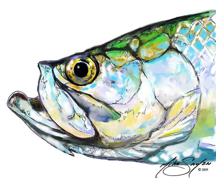 Tarpon pictures draw tarpon drawings tarpon canvas for Tarpon fish pictures