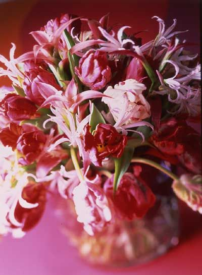 13 Best February Wedding Flowers Images On Pinterest