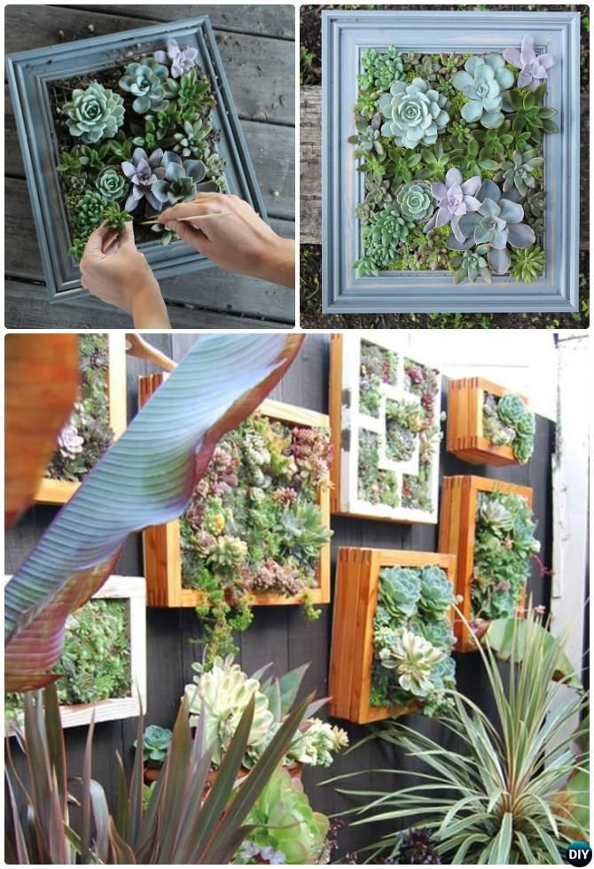 Best 25 succulent wall gardens ideas on pinterest Outdoor fence art ideas