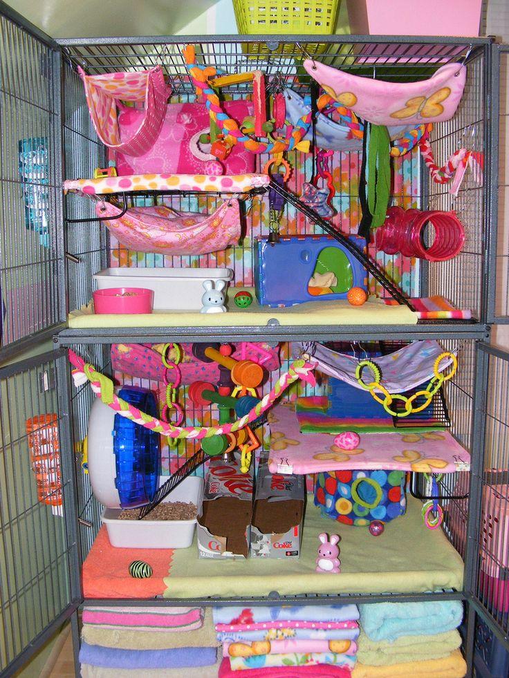 25 best ideas about rat cage on pinterest small rat. Black Bedroom Furniture Sets. Home Design Ideas
