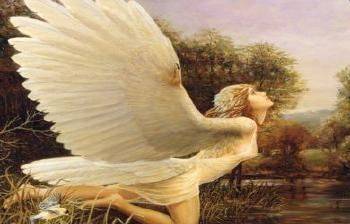 Engelenbericht maand mei