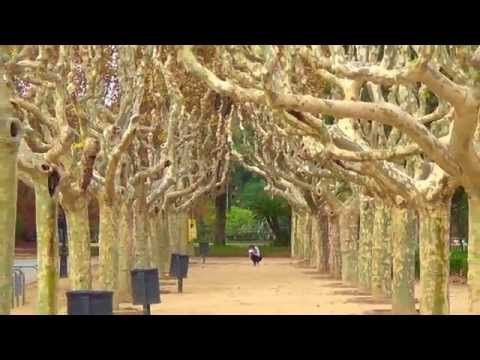 Study Abroad Update #4 - YouTubeTravel Europe form Maastricht  #studyabroad #travel #Maastricht #exchange