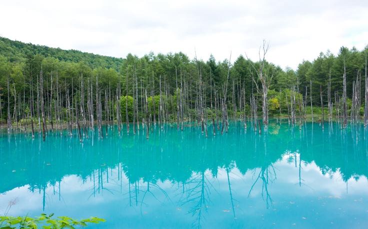 Blue pond at Furano, Hokkaido.