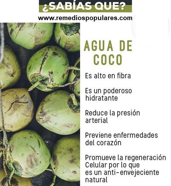 Agua De Coco Beneficios Y Contraindicaciones Brussel Sprout Brussel Salud