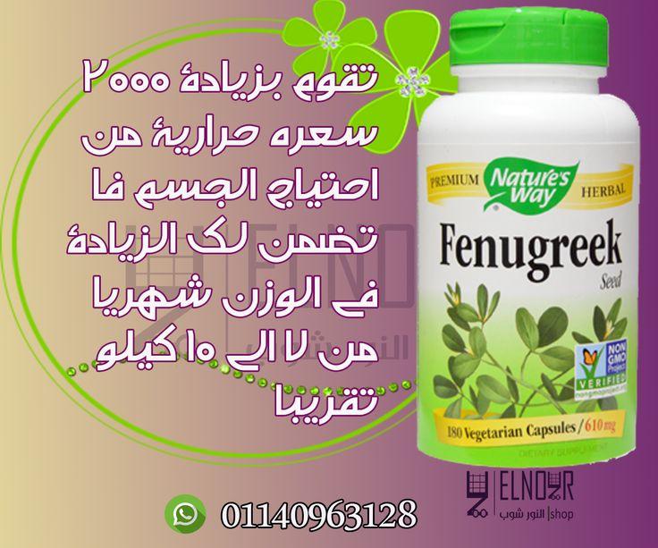 كبسولات الحلبة الامريكية Fenugreek لزيادة الوزن تقنية من اعشاب الحلبة الطبيعية اهتمامنا بعملائنا يبدأ من لحظة التواصل معنا Ma Herbalism Fenugreek Capsule