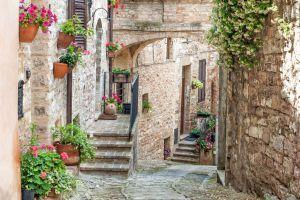 Sensational Umbria - Steve McCurry in Umbria On  #EatorganicBio