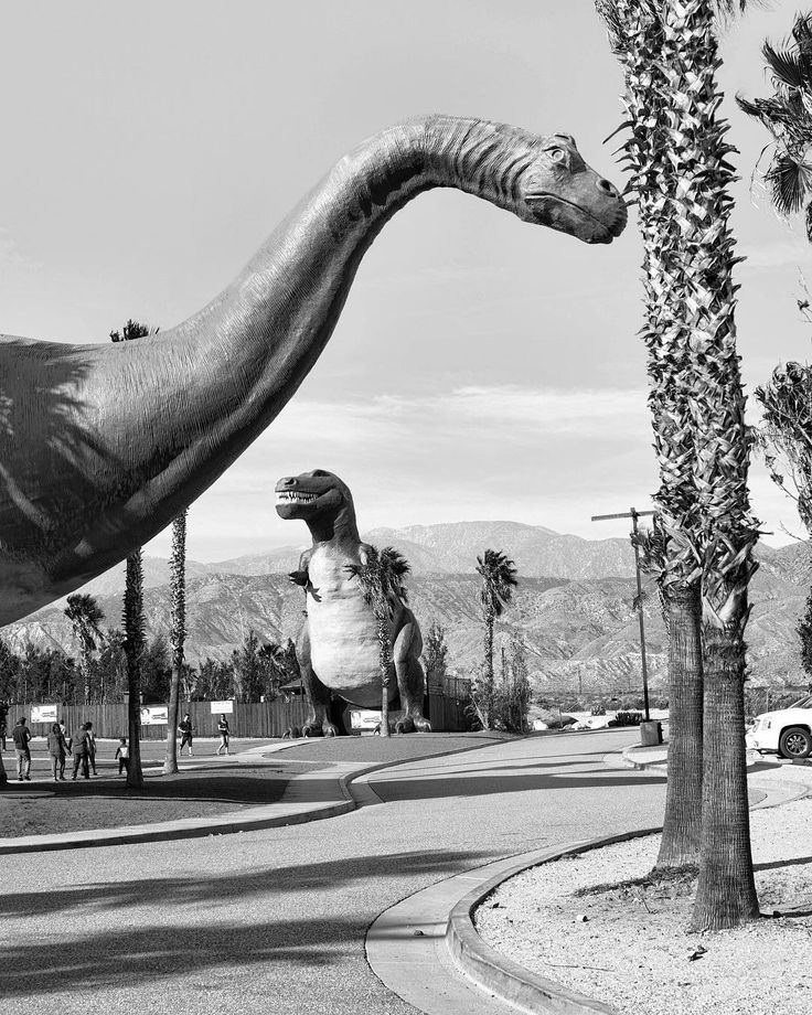 Untitled. Location: Cabazon California : Sony A6000 / Zeiss 32mm f/1.8  #bnw #blackandwhite #bw #monochrome #dinosaurs #sculpture #cabazon #cabazondinosaurs #losangeles #la #california #ca #usa #mirrorless #sony #sonyimages #sonyalphasclub #agameoftones #sonyalpha #alpha #a6000 #zeiss #carlzeiss #nikcollection