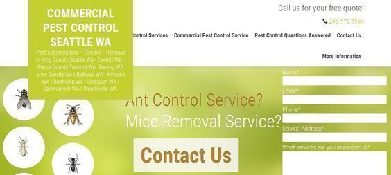 To get rid of ants,roaches,bed bugs,mouse,mice,rats, bugs, insects or other pests and keep them gone, you need an expert exterminator who is familiar with pest problem in your home or business, there are many benefits to choosing a local pest control service to the Redmond, Kirkland, Issaquah, Samammish WA area. #cockroachesexterminators http://ampmexterminators.com/