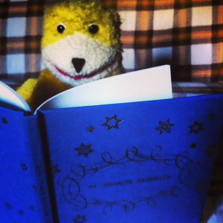 Flat eric reading his favourite book