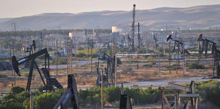 Judge Strikes Down Plan to Open One Million Acres of