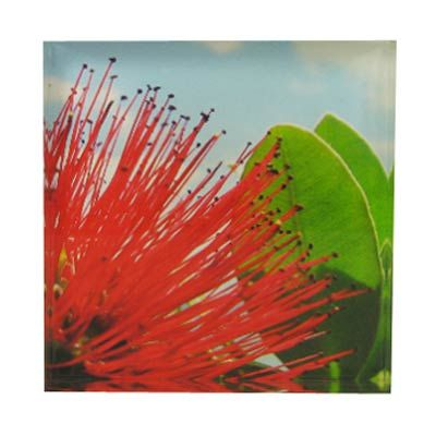 Pohutukawa Day Art Block  Artearoa | Shop New Zealand NZ$ 35.90