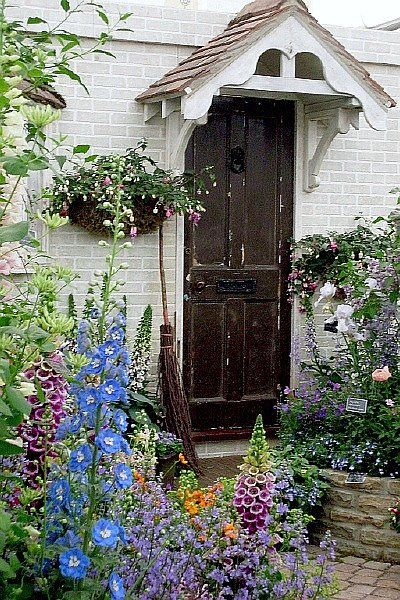 cottage garden - delphiniums and foxgloves