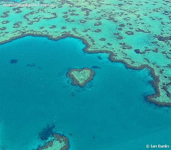 ~ The Whitsundays - The Great Barrier Reef, Australia ~
