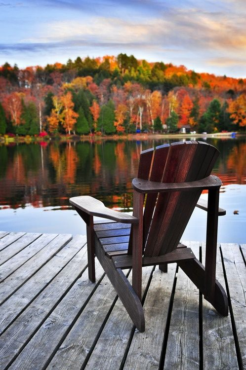 Adirondack Chairs, Cup Of Coffee, Coffee In The Morning, Good Books, The  View, Serenity, Autumn Fall, Autumn Leaves, Autumn Trees