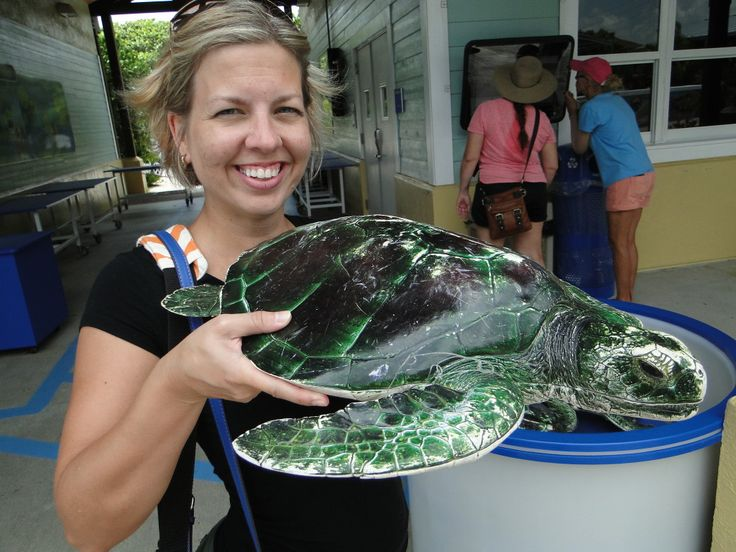 Having fun with the sea turtles (this one isn't real, y'all!!)