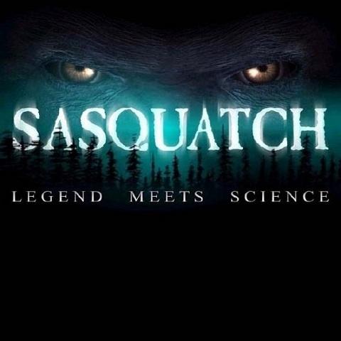 bigfoot yeti meet science daily