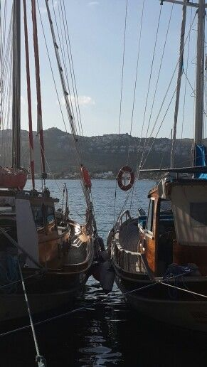 Bodrum / Bitez day boats at the harbour