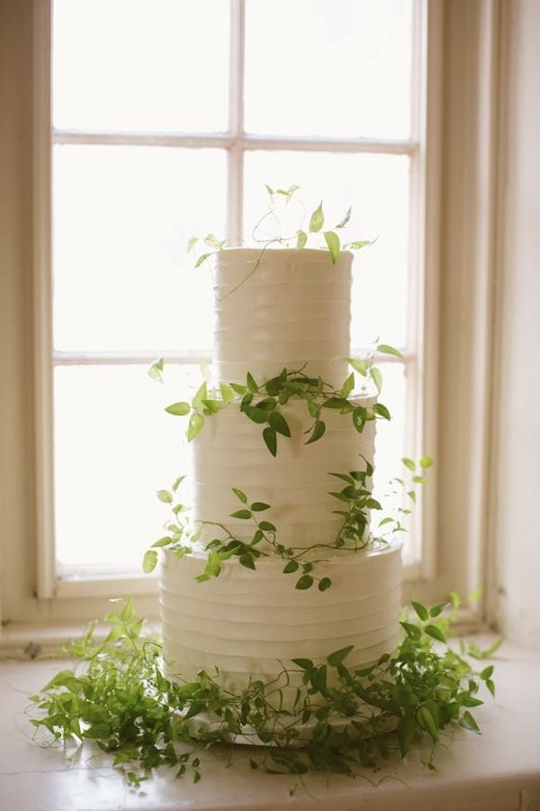 vine wedding cake organic green wedding decor with vines or olive 21596
