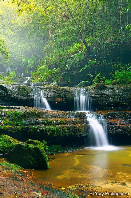 ✯ Terrace Falls - Blue Mountains, NSW Australia