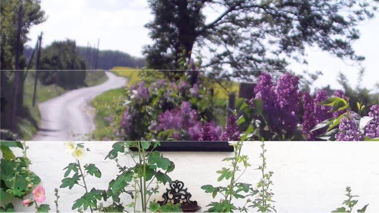 Stemningsbilleder fra Rosengaarden Bed and Breakfast nær Faaborg på Sydfyn, Danmark.