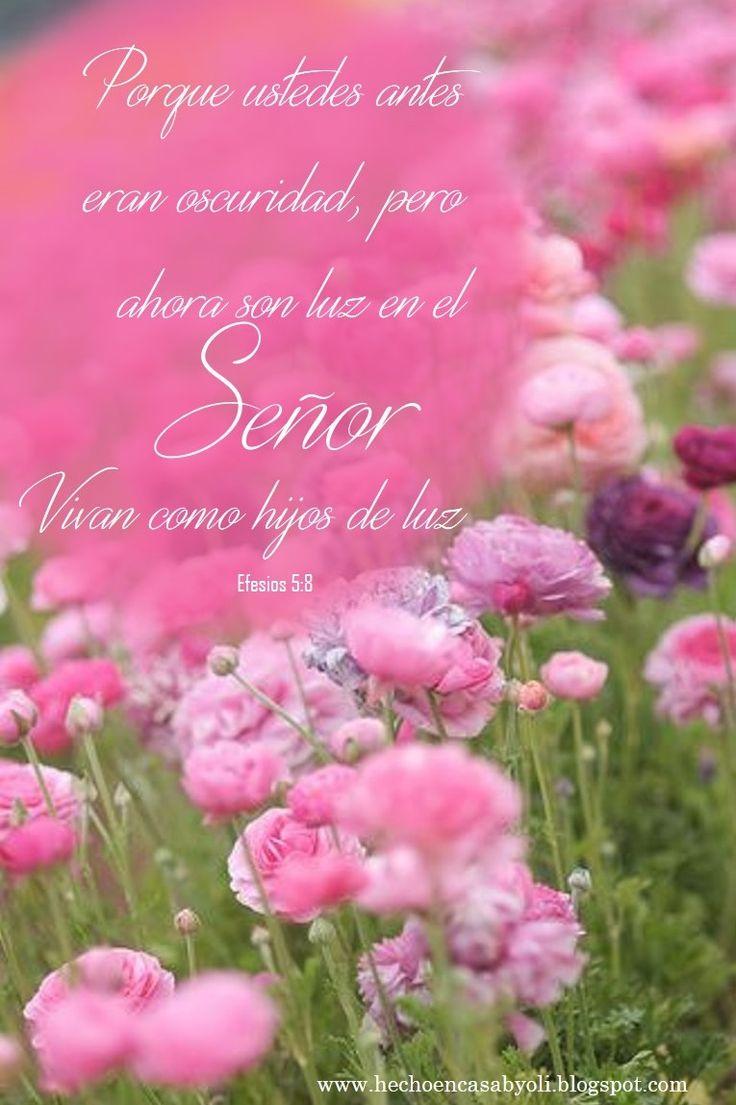 Efesios 5:8 Porque en otro tiempo erais tinieblas, mas ahora sois luz en el Señor; andad como hijos de luz.♔
