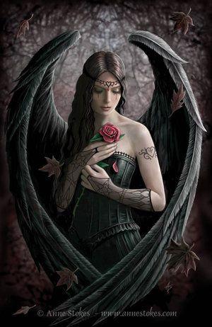 Angel Rose by Ironshod deviantart