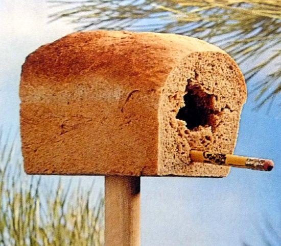 Een uitgehold brood op een stok + potlood = feest voor de vogels!