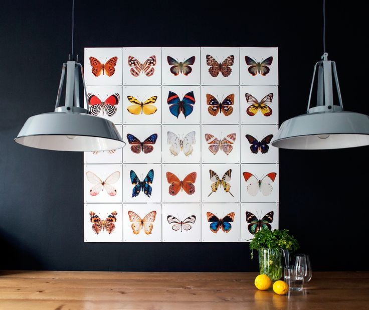 ixxi special collection: Butterflies