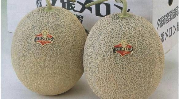 Yubari King Melons – $22,872 No, these are not the ordinary cantaloupes that you can find in the supermarket. The orange-fleshed Yubari King melons are coveted because o...