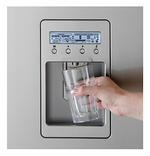 Chilled Filtered Water on the Door hopefully the Electricity savings from the kids not opening will cover the extra $100 for This and Ice Maker