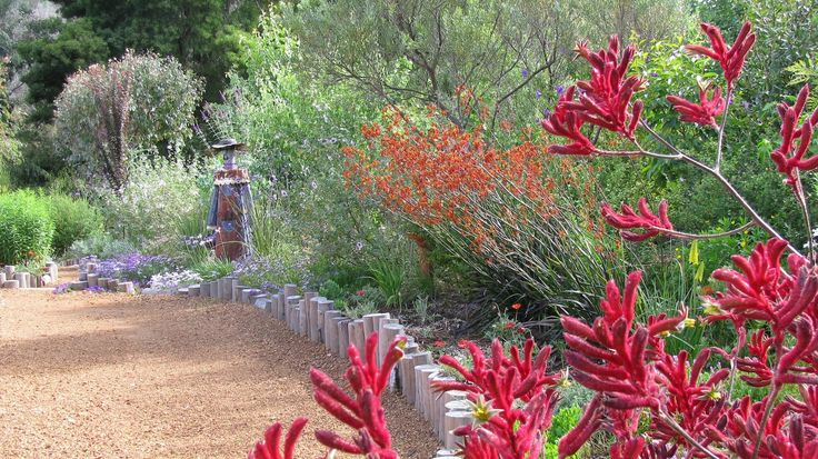 Native plants add colour and attract native birds
