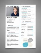 Exemple de CV Original - Modèle de CV Design   Maxi CV